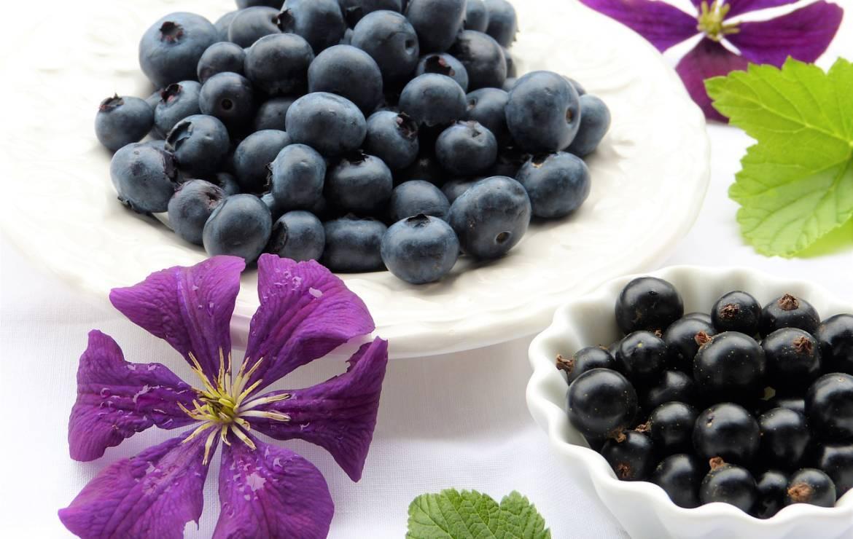 Understanding the Low FODMAP Diet